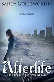 Afterlife - Sandy Goldsworthy
