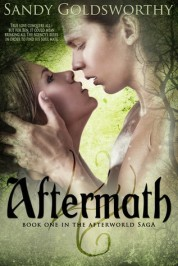Aftermath - Sandy Goldsworthy