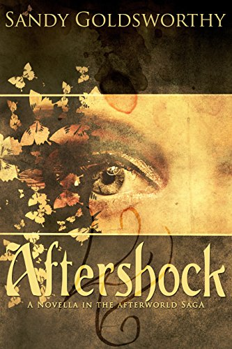 Aftershock - Sandy Goldsworthy